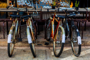 Bicycles Lined Up Outside Coffee Shop