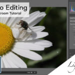 Video Editing with Lightroom Tutorial