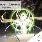 Strange Flowers with Light Painting