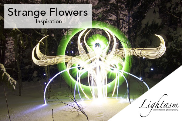Growing Strange Flowers in the Dark with Light Painting