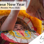 Twice the Fun at Chinese New Year 2017 for Year of the Rooster